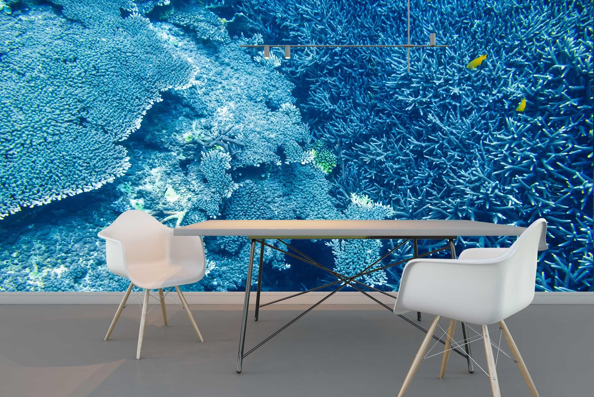 tapet-fototapet-comanda-personalizat-bucuresti-perete-special-lux-model-fotografie-subacvatica-ocean