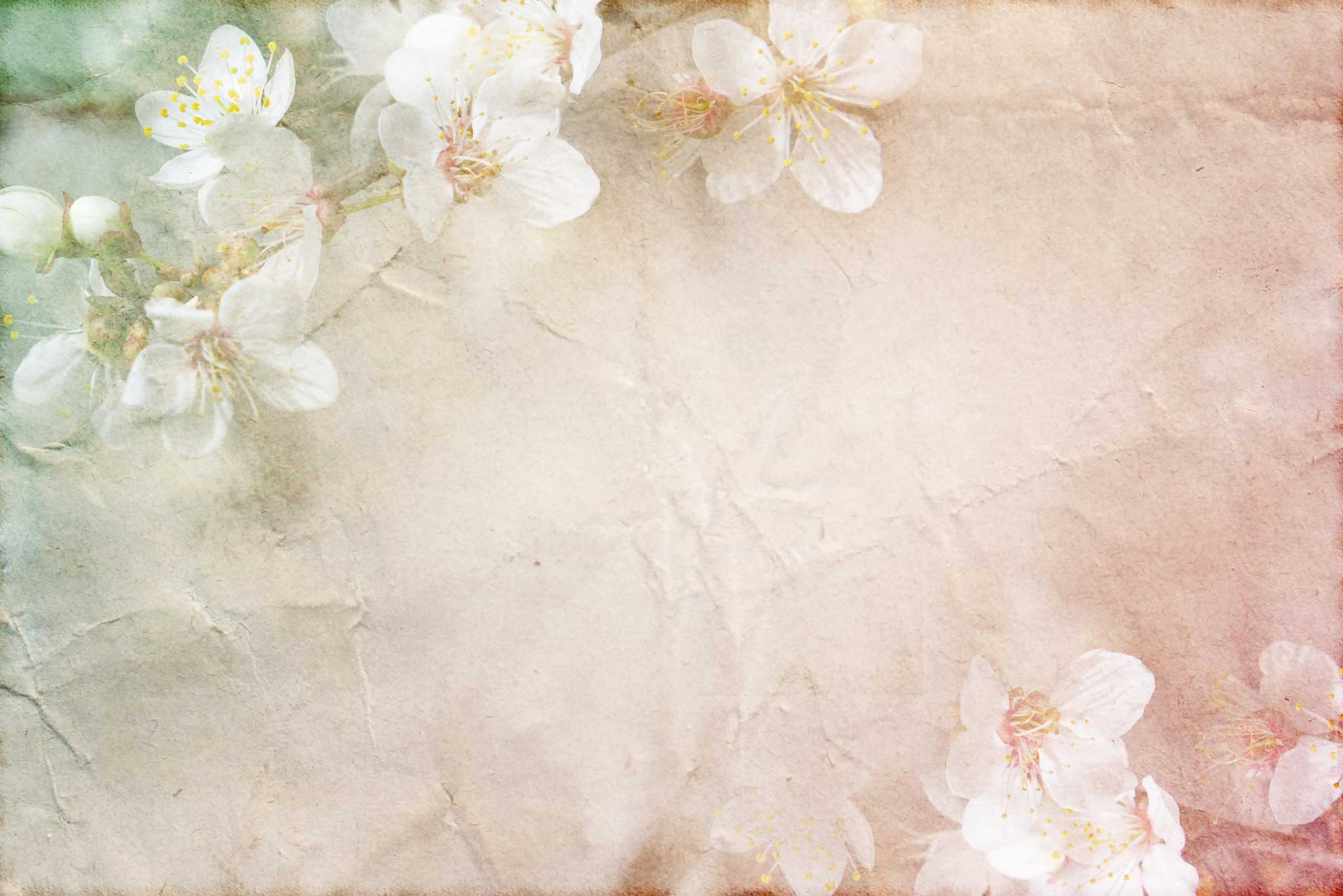 tapet-fototapet-design-decor-mural-customizabil-comanda-personalizat-bucuresti-daring-prints-motiv-model-floral-flori-cires-culori-pastel